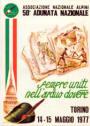 1977-torino